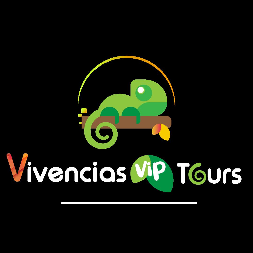 vivenciastours.com